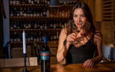 """""""Vinurile Știrbey sunt pentru mine ca melodiile formației preferate"""" – Interviu cu Laura Copil"""